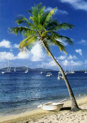 Caribbean Charter Holidays - Crewed or Bareboat